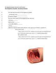 anatomy and physiology 101 study guide