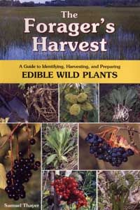 wild plant identification guide online