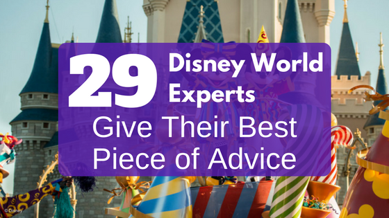 best guide to disney world