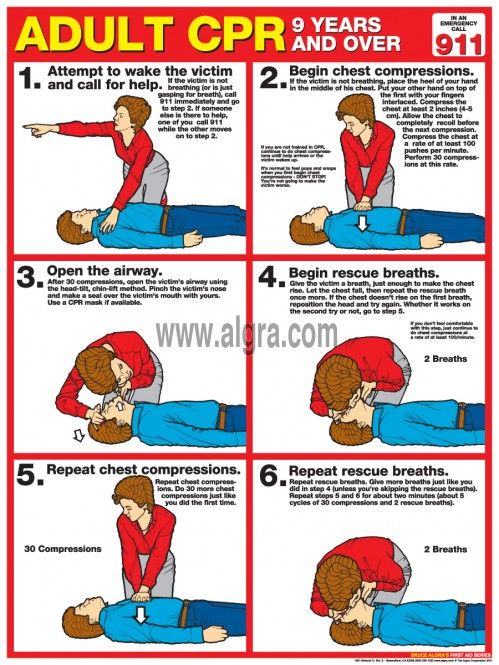 first aid reference guide pdf