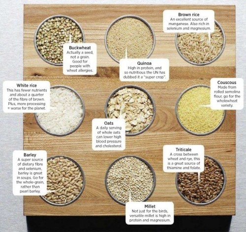 grain products canada food guide