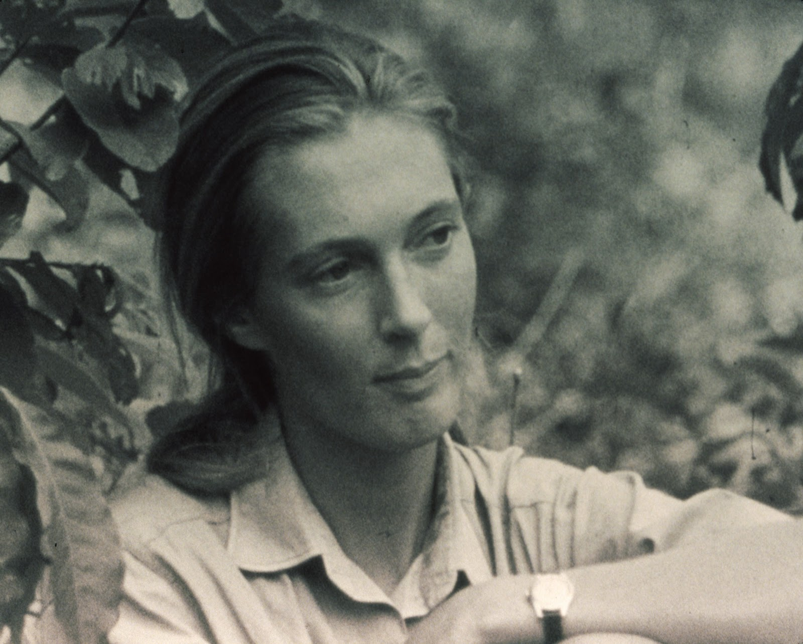 jane goodall harvest for hope a guide to mindful eating