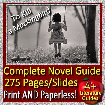 to kill a mockingbird common core aligned literature guide